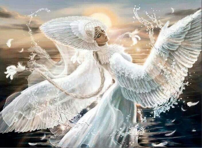 Картинка птиц ангел