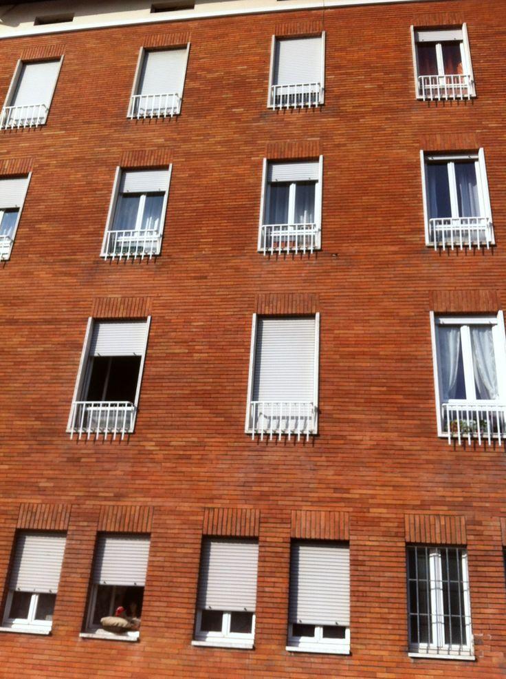 Building in Prato City