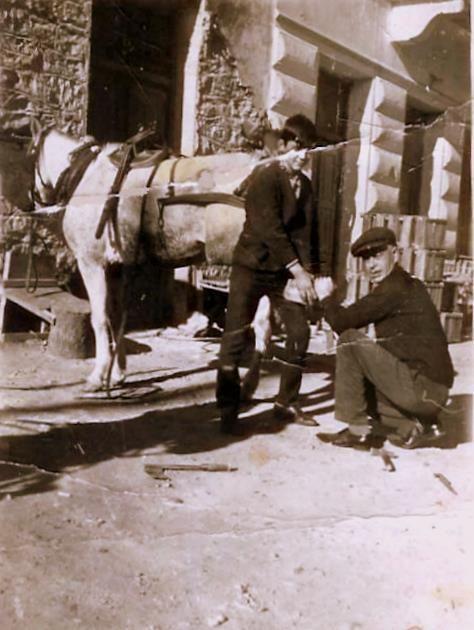 Αλμπάνης (από το τουρκικού nalbant, αλμπάνης = πεταλωτής) Ο πεταλωτής έβαζε στα ζώα τα πέταλα στην ουσία  τα παπούτσια τους