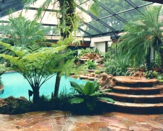 A Screened In Pool Area With A Tropical Lagoon Style