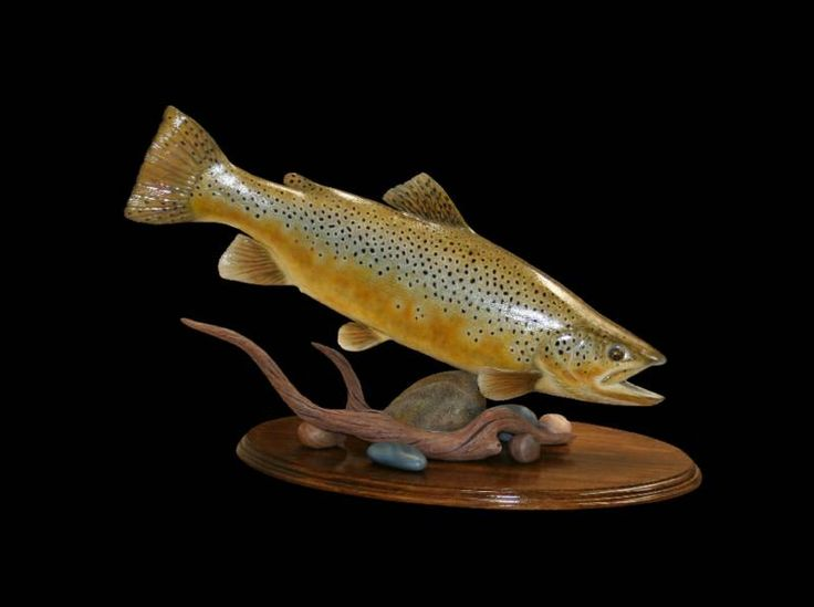 Best images about carved trout on pinterest dean o