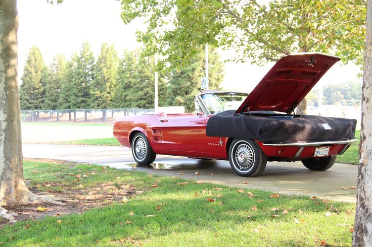 '67 Mustang. Perfect Fit!