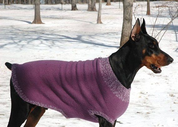 Knitting Pattern For Xl Felted Dog Sweater Coat Pdf Pattern