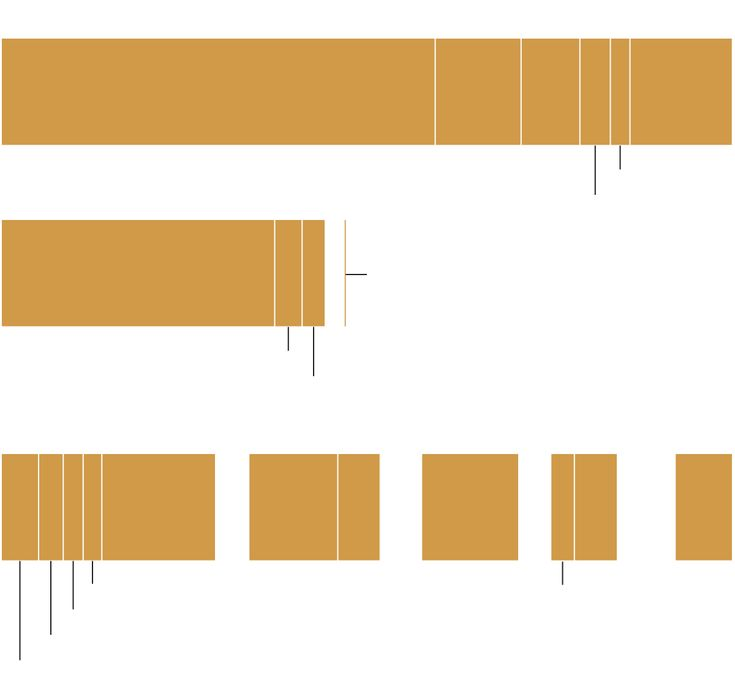 World Carbon Emissions - NYTimes.com