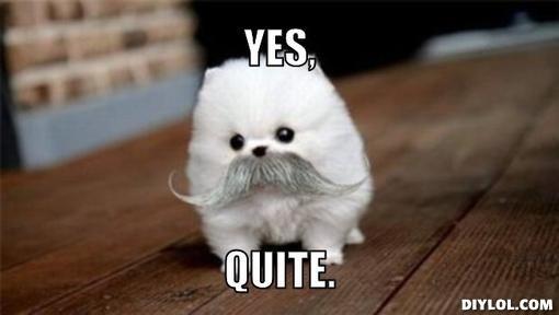 yes dog meme - photo #15