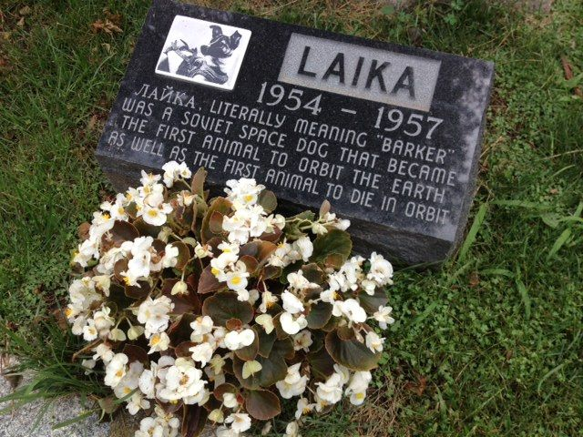 "Memorial at Hartsdale Pet Cemetery for Laika. The inscription reads: ""LAIKA 1954 - 1957. Literally meaning 'barker' was a Soviet space dog that became the first animal to orbit the earth as well as the first animal to die in orbit."""