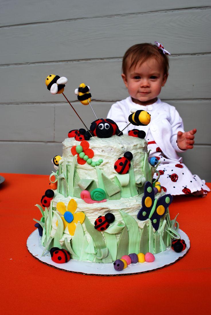 Bug Birthday Cake Parties Around Here Pinterest