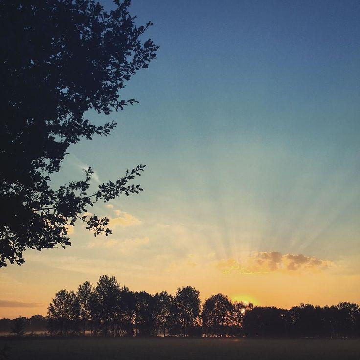 To když jsem jednou ráno běžel kolem vltavy #morning #morningrun #morningsun