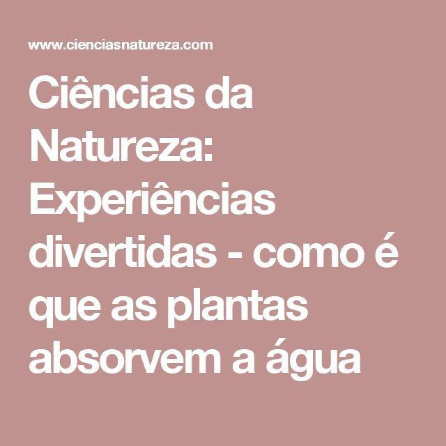 Ciências da Natureza:  Experiências divertidas - como é que as plantas absorvem a água