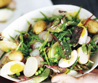 En riktigt god och matig potatissallad med ägg. Servera potatissalladen ljummen som lunch eller varför inte ta med den som matlåda till jobbet? Enkelt och gott.