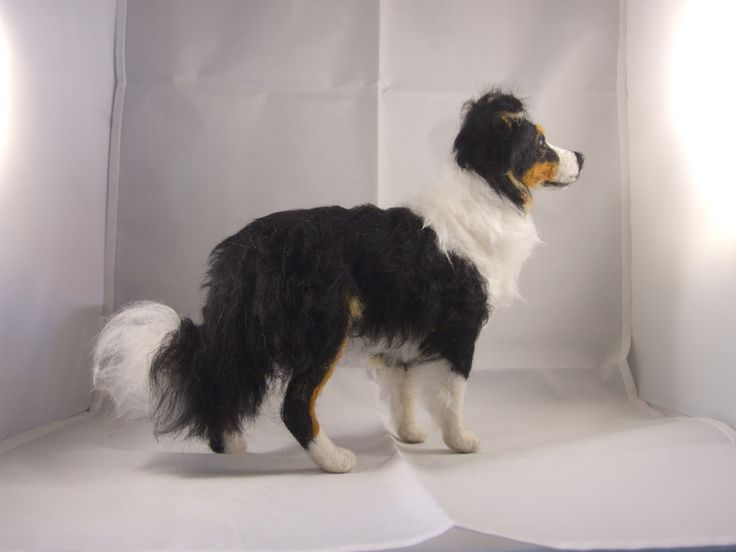 Needle felted Border Collie tri-colour