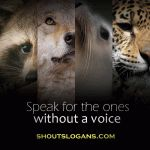 Wildlife Conservation Slogans