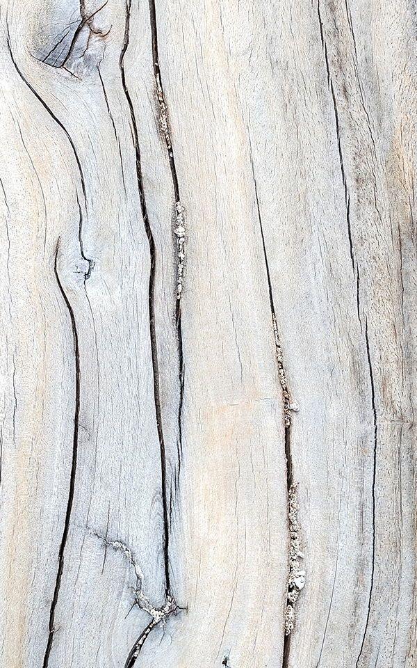 Mural De Pared Detalle De Madera Desgastada Rustic Wallpaper Wood Effect Wallpaper Feature Wallpaper