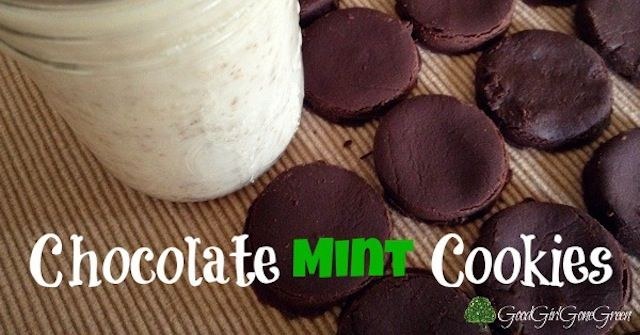 Push over Girl Guides there are new chocolate mint cookies in town. Grab a tall glass of nut milk and enjoy these sweet vegan paleo chocolate mint cookies!