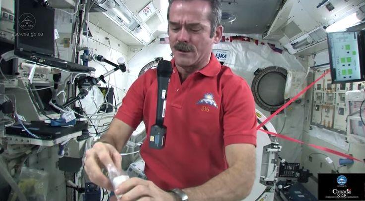 Kegiatan Astronot Stasiun Luar Angkasa