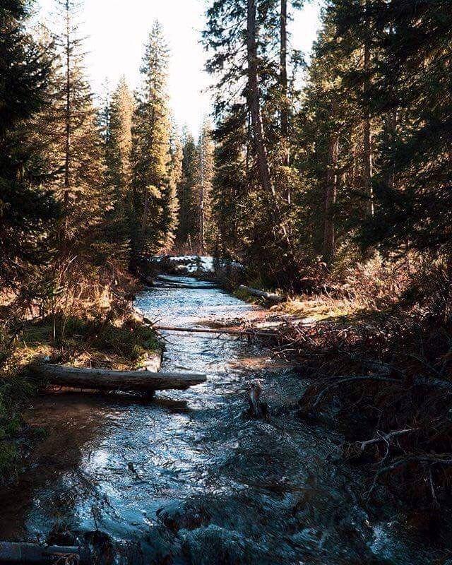 Pinterest Ohhyazmine Nature Photography Beautiful Nature Landscape Photography