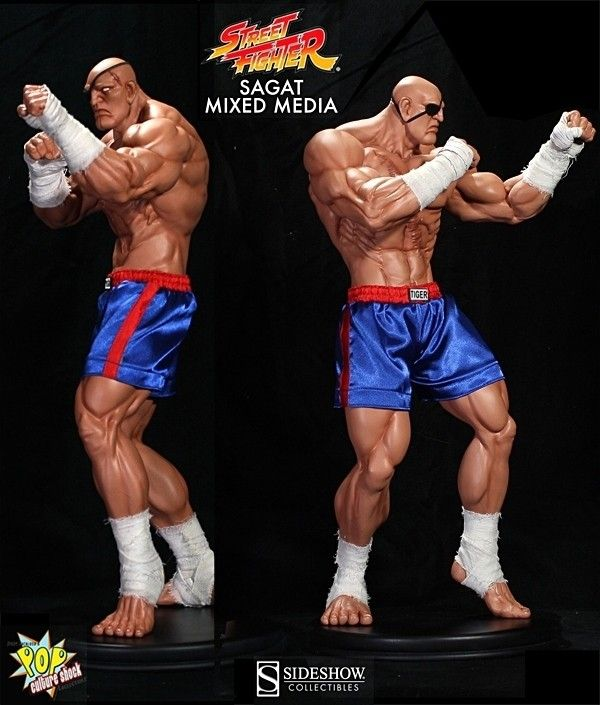 street fighter 5 sagat | Home Street Fighter IV: Sagat Mixed Media Statue 53 cm