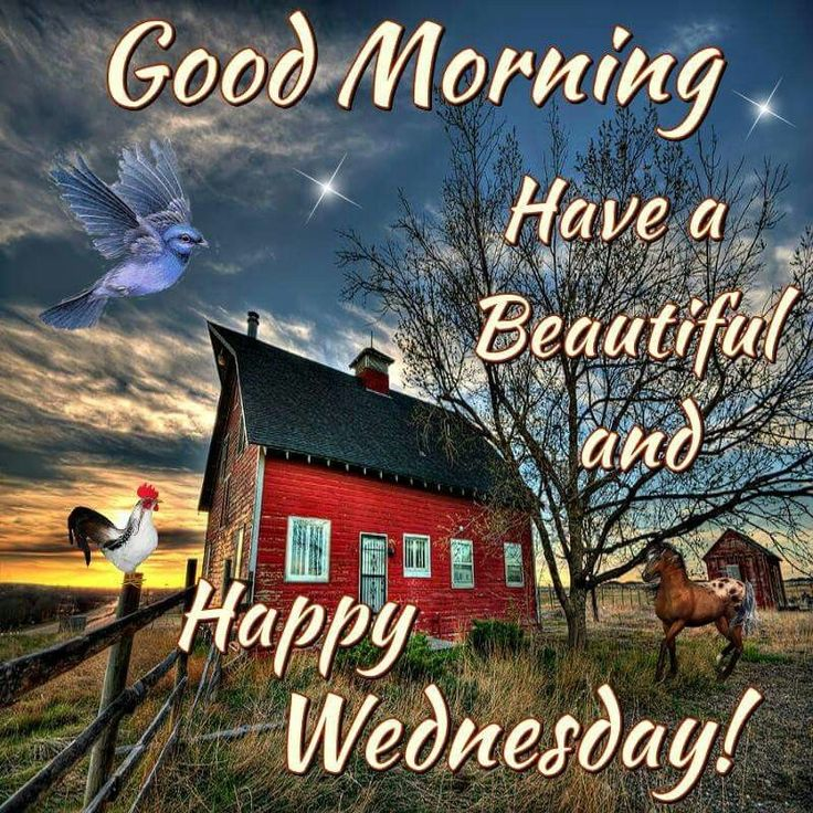 Good Morning, Have A Beautiful And Happy Wednesday