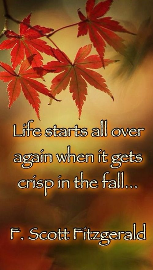 Life starts all over again when it gets crisp in the fall... - F. Scott Fitzgerald