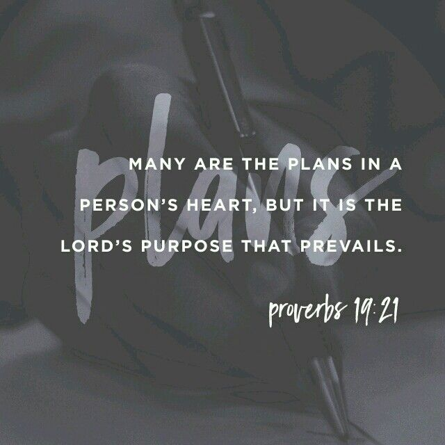 Proverbs 19:21 this is very true. I had plans and expectations, but God has a different plan for me, and I am believe his promise that it will be better