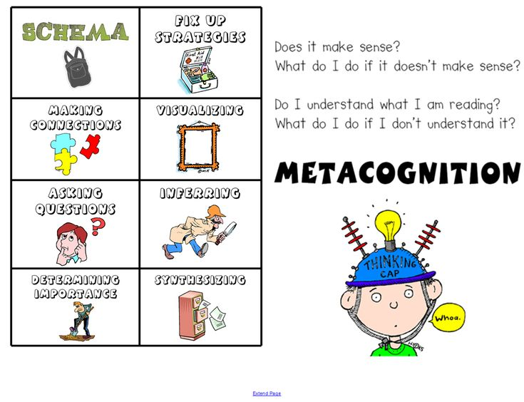 Metacognitive essay example