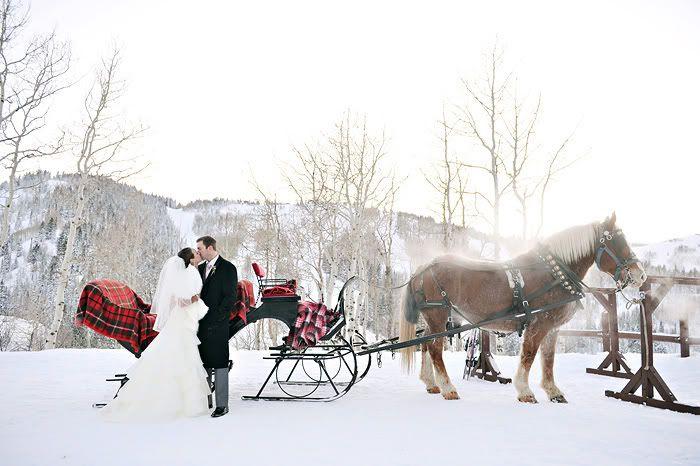 Winter wedding sleigh ride