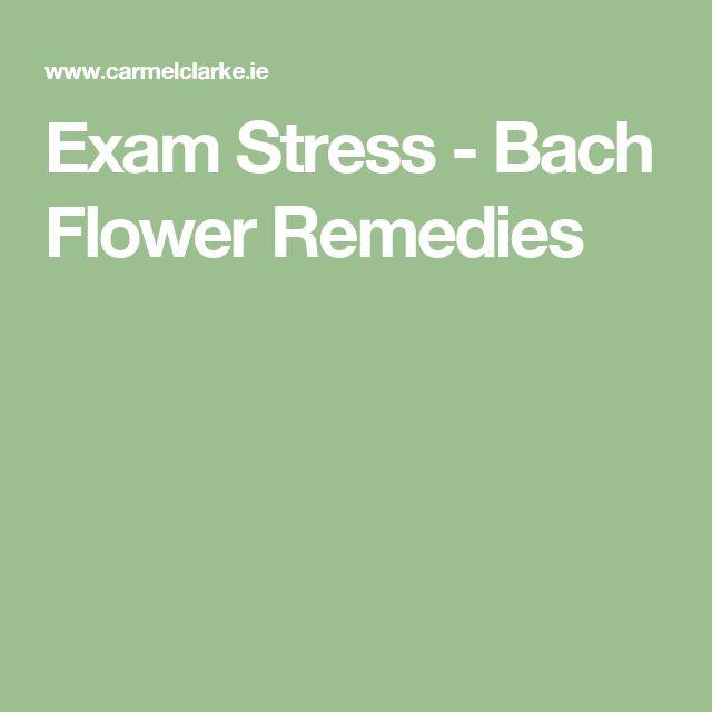 Exam Stress - Bach Flower Remedies