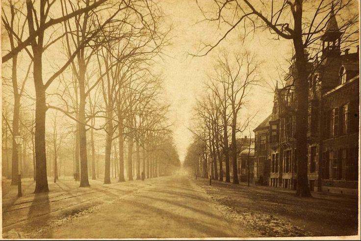 Haarlem, Dreef in 1880