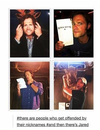 ...and then there's Jared