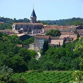 Saint-Drézéry a été fondé aux IVe et Ve siècles. Le hameau poursuivit sa croissance au travers des siècles. Son château fût la propriété de Jean-Jacques Régis de Cambacérés, avocat, homme politique, principal rédacteur du Code Civil français. Jusqu'au XXe siècle, la commune s'appelait Saint-Drézéry de Courbessac. À quelques kilomètres de Montpellier, Saint-Drézéry a su conserver cette ruralité de village typiquement languedocien.
