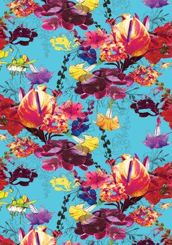 :: Ayme Fitzgerald - Pattern Designer ::