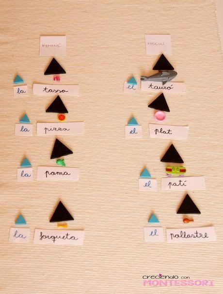 Gramática Montessori - El Artículo - Creciendo con Montessori