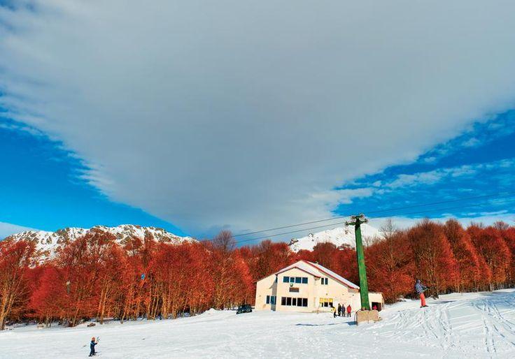 Ακολουθώντας τον ορεινό δρόμο που συνδέει την Καστοριά με τη Φλώρινα μέσω Βιτσίου θα προσεγγίσετε το μικρό Χιονοδρομικό Κέντρο.  ΑΘ. ΦΡΑΣΙΑΣ