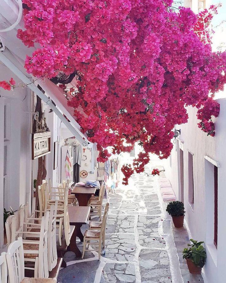 Mykonos, Greece #wanderlust #travel #greece