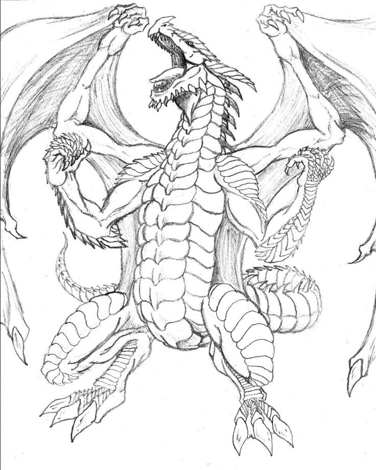 flying dragon (With images) | Dragon coloring page ...