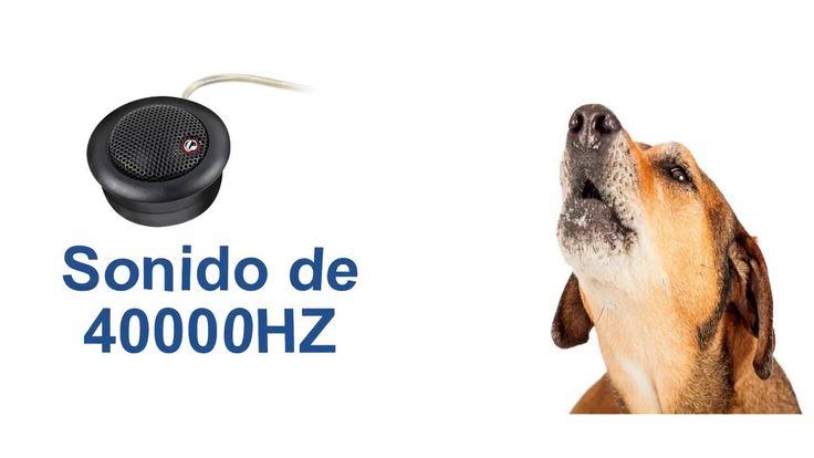 Sonidos de silbato de perros para Ahuyentar o Antiladridos  sonidos de silbato para perro sirve para ahuyentador o anti ladridos para los perros, puedes descargar los sonidos en tu celular y reproducirlo, para el caso número uno que necesites para ahuyentar a los perros es ideal para llevar siempre en los paseos