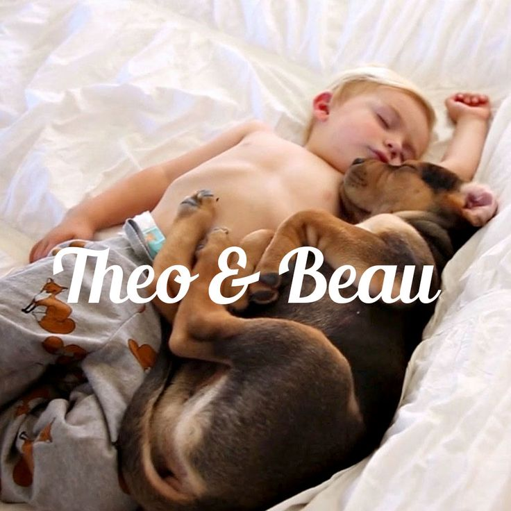 Best Baby And Pup Images On Pinterest Puppies Baby And Bad Mood - Theo beau cutest animal human pairing ever