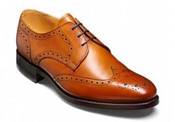 Barker Longworth is a wingtip Derby shoe with brogue detailing.  http://www.robinsonsshoes.com/barker-longworth.html