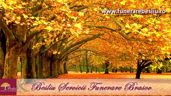 Besliu Servicii Funerare non stop in Brasov  http://www.funerarebesliu.ro