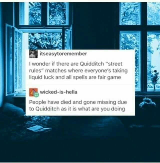 Quidditch •