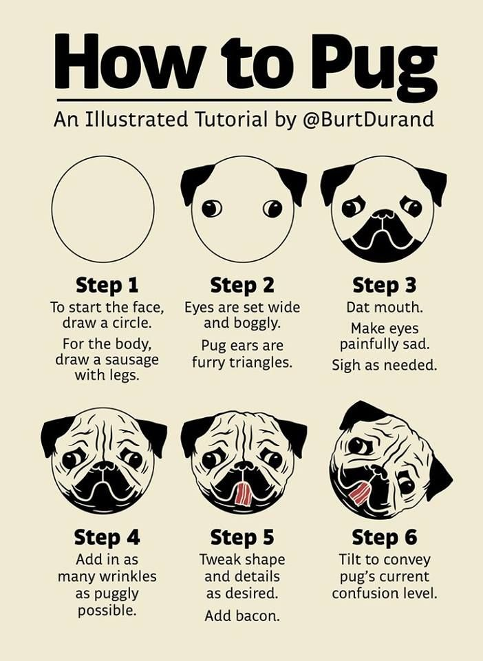 How to pug