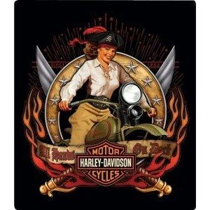 Pirate Babe on a Harley-Davidson motorcycle. This is a great tin sign to hang in your garage or man cave!