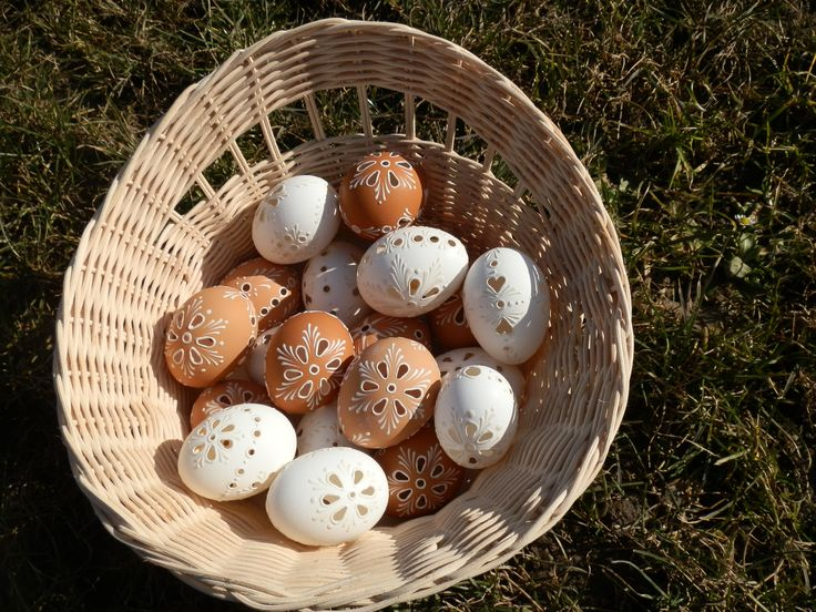 vajíčka 2015