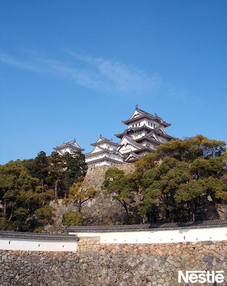 画像B 世界遺産 さて、こちらはどちらでしょうか?姫路城になります♪