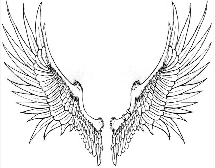 eagles wings drawings
