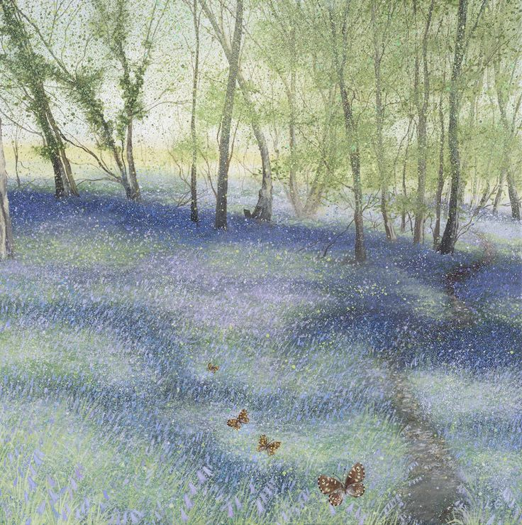 Bluebells and Butterflies by Lucy Grossmith