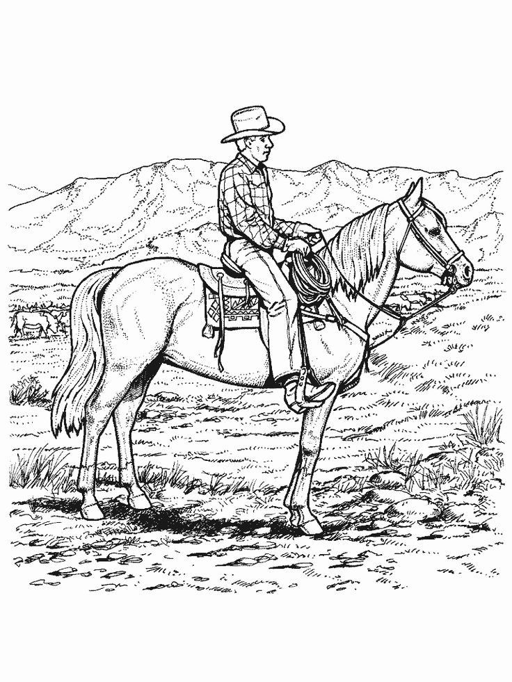 1547 Best Coloring Pages Images On Pinterest Horse Coloring