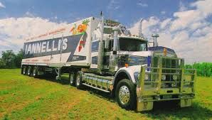 "Ianelli's ""Flying Nugget"" W900"