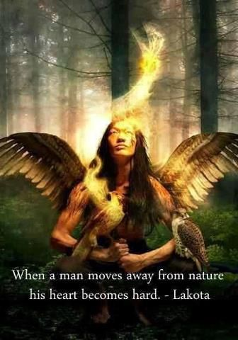 """When a man moves away from nature his heart becomes hard."""