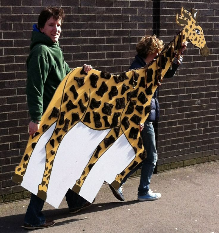 Monduli the #AfricanGiraffe moves to our new African #CharityShop in #SheptonMallet...